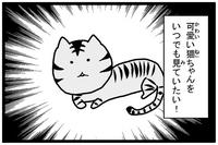 kawaiinekochan.jpg